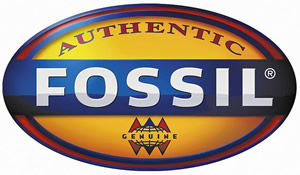 Find out more about Fossil